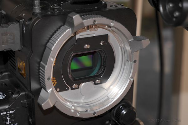 F55 with 4K OLPF
